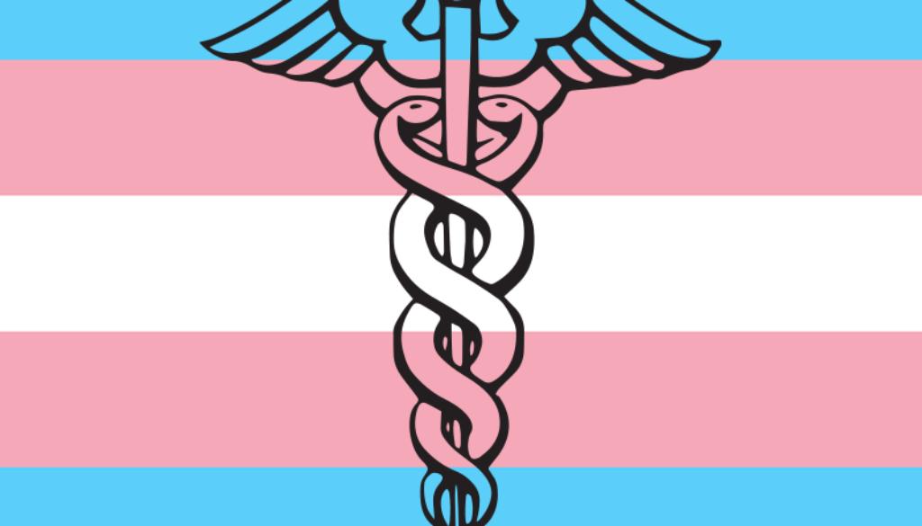 Understanding Multilevel Barriers to Healthcare for Transgender Populations  in the U.S.