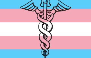 IAPHS transflag
