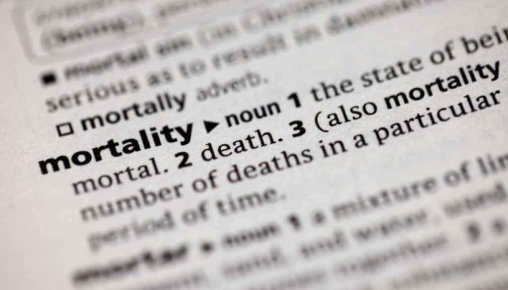 mortality dictionary word