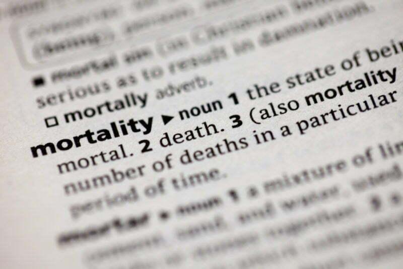 mortality dictionary word