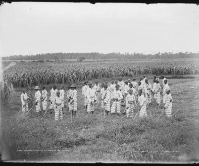 Overpolicing children in fields
